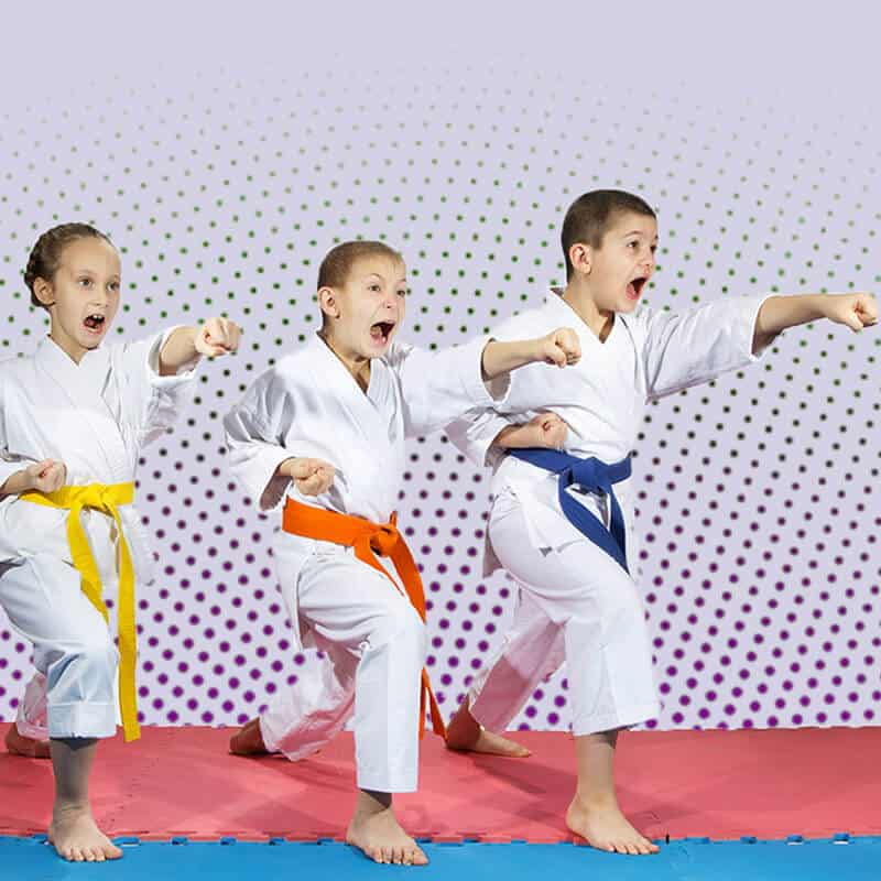Martial Arts Lessons for Kids in Carmichael CA - Punching Focus Kids Sync